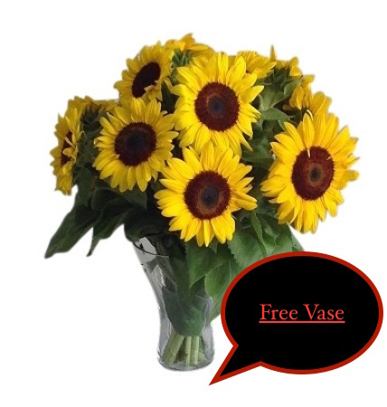 Special Free vase with sunflowers