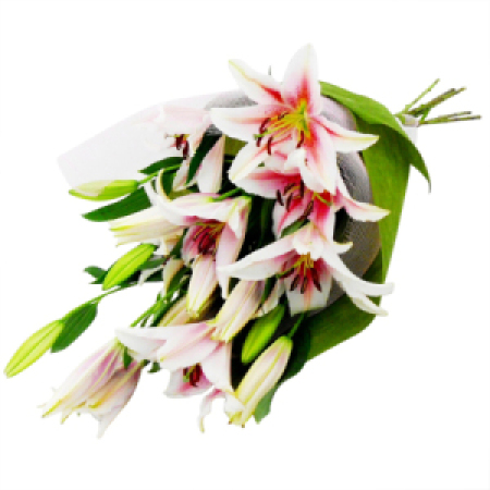 Bouquet of lily Special